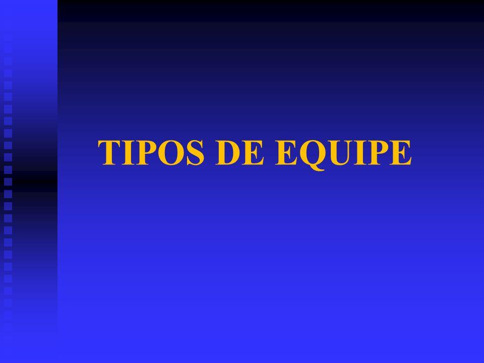 TIPOS DE EQUIPE
