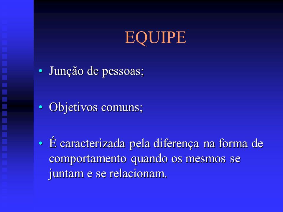 EQUIPE Junção de pessoas; Objetivos comuns;