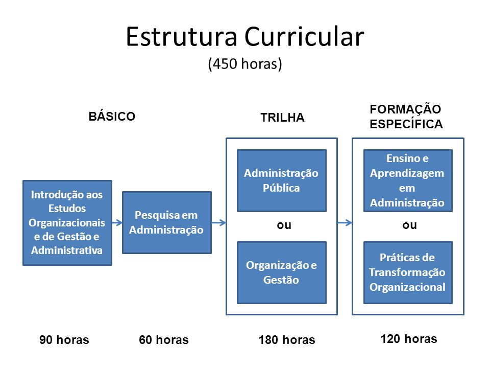 Estrutura Curricular (450 horas)