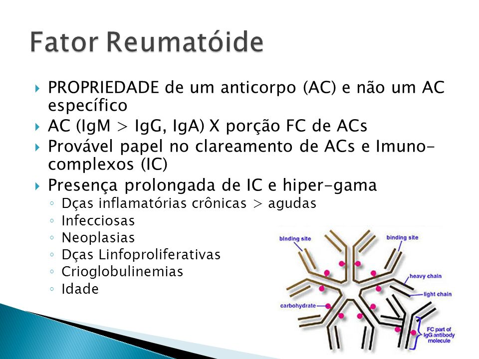 Fator Reumatóide PROPRIEDADE de um anticorpo (AC) e não um AC específico. AC (IgM > IgG, IgA) X porção FC de ACs.