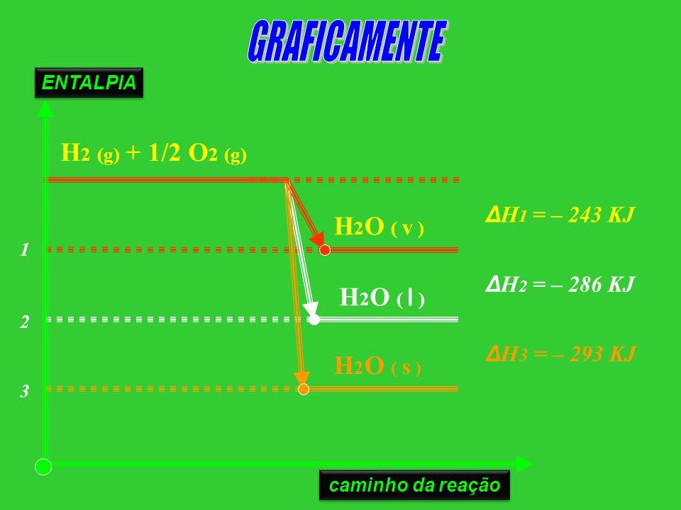 GRAFICAMENTE H2 (g) + 1/2 O2 (g) H2O ( v ) H2O ( l ) H2O ( s )
