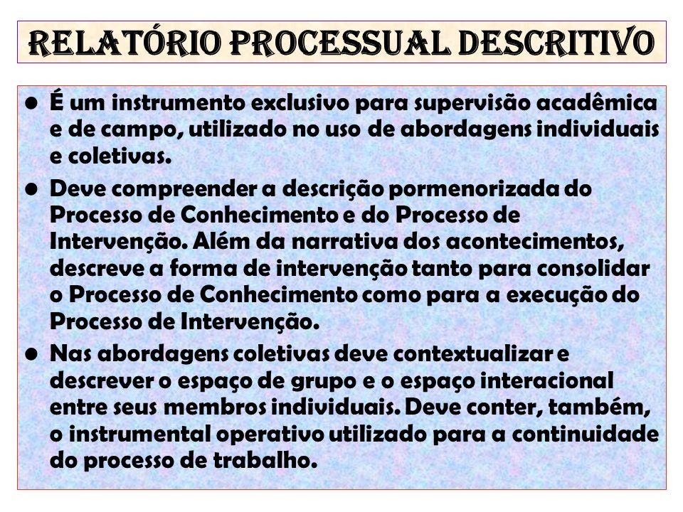 RELATÓRIO PROCESSUAL DESCRITIVO