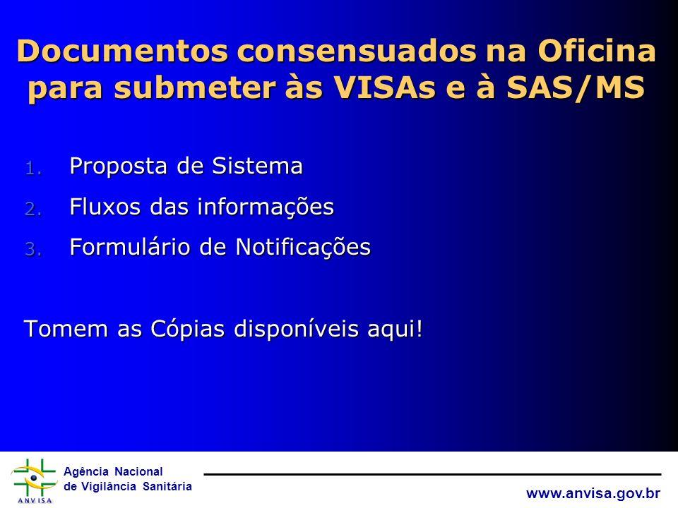 Documentos consensuados na Oficina para submeter às VISAs e à SAS/MS