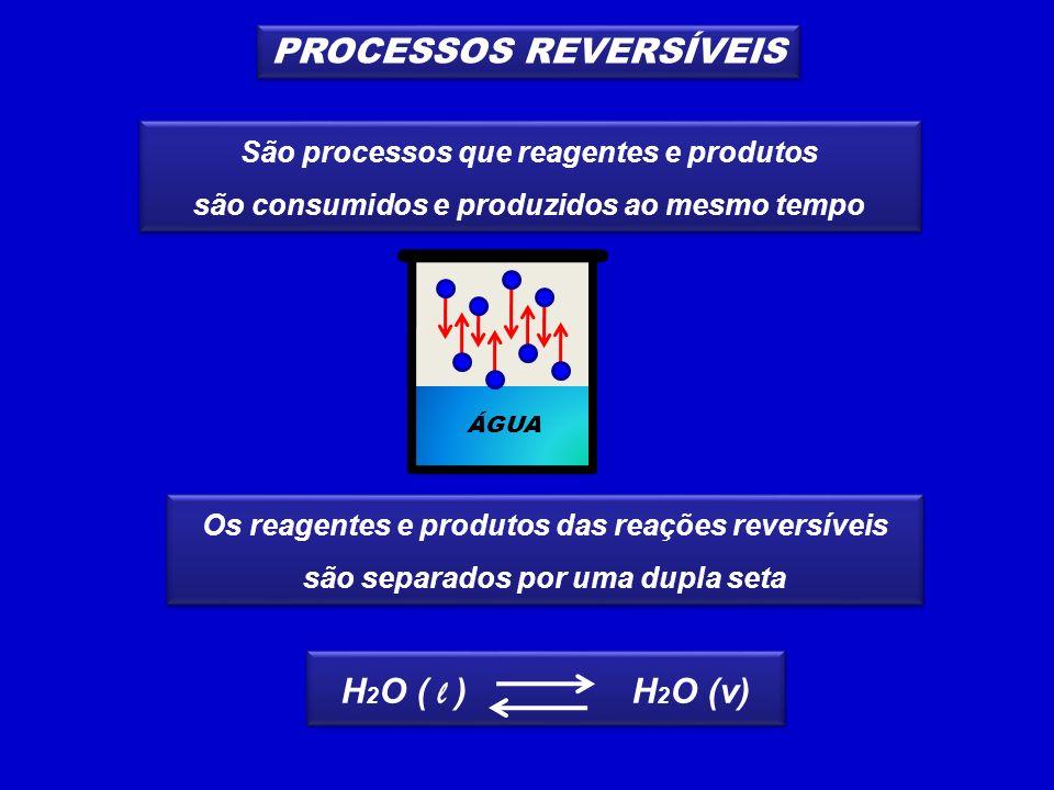 PROCESSOS REVERSÍVEIS