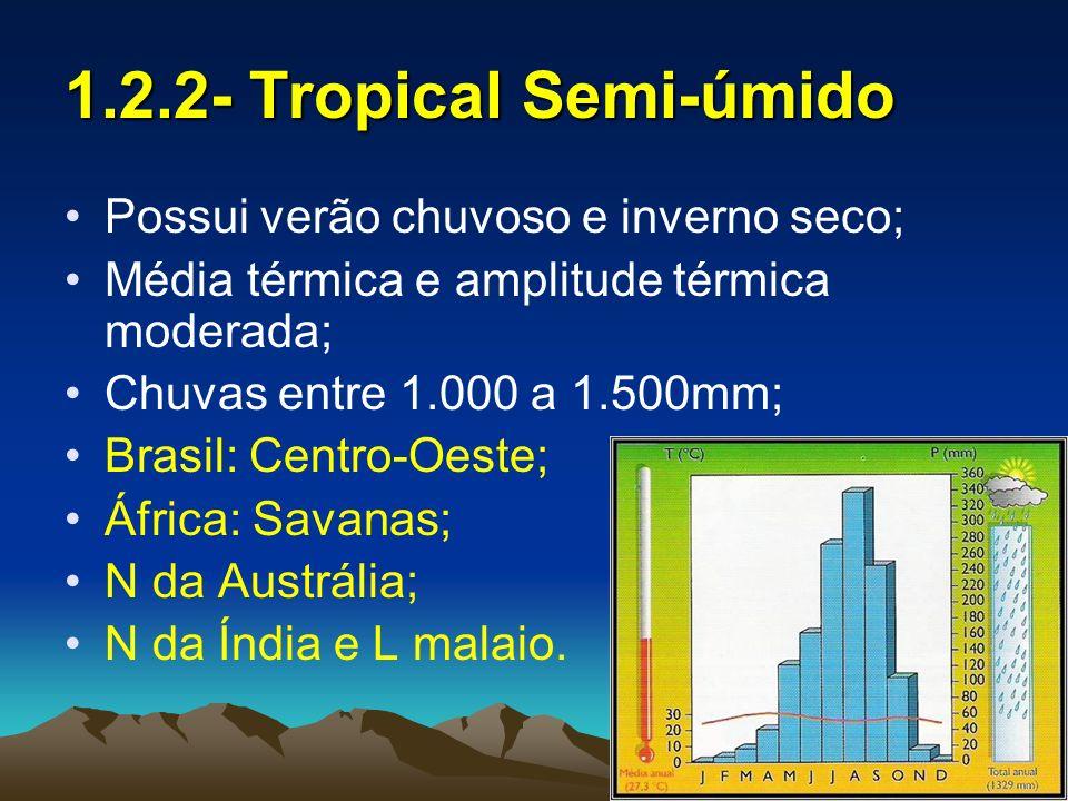 1.2.2- Tropical Semi-úmido Possui verão chuvoso e inverno seco;
