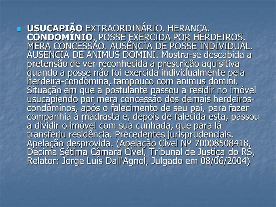 USUCAPIÃO EXTRAORDINÁRIO. HERANÇA. CONDOMÍNIO