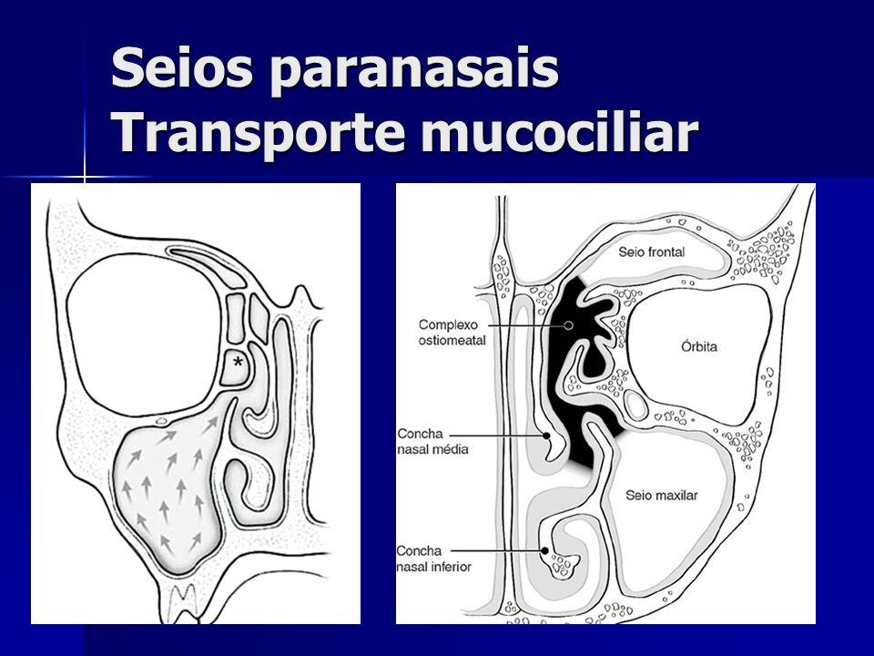 Seios paranasais Transporte mucociliar