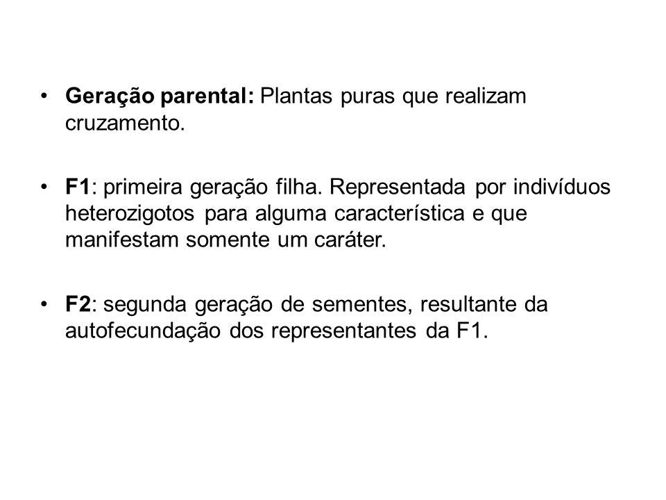 Geração parental: Plantas puras que realizam cruzamento.