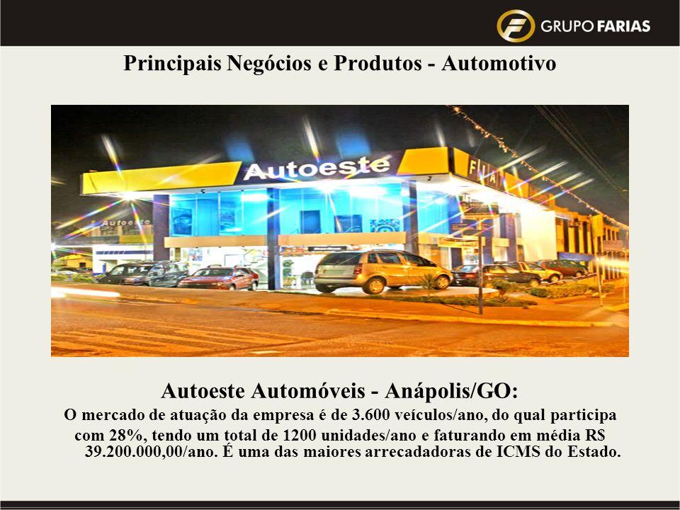 Principais Negócios e Produtos - Automotivo