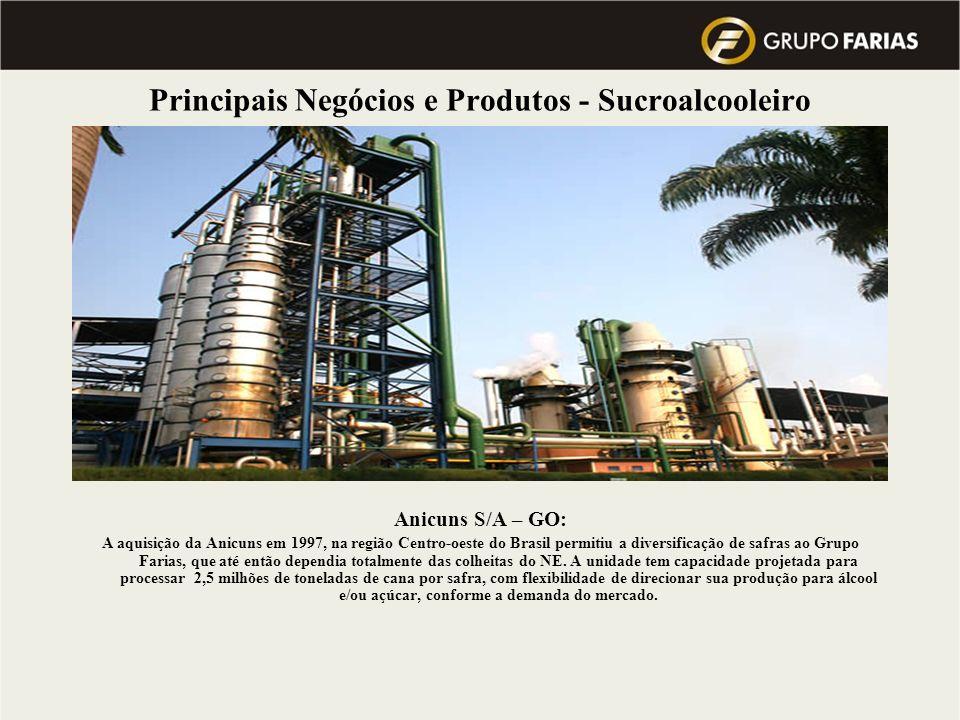 Principais Negócios e Produtos - Sucroalcooleiro