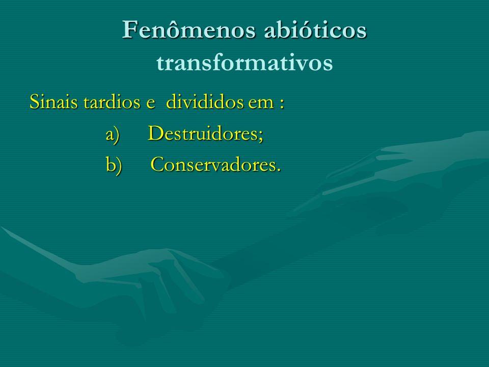 Fenômenos abióticos transformativos