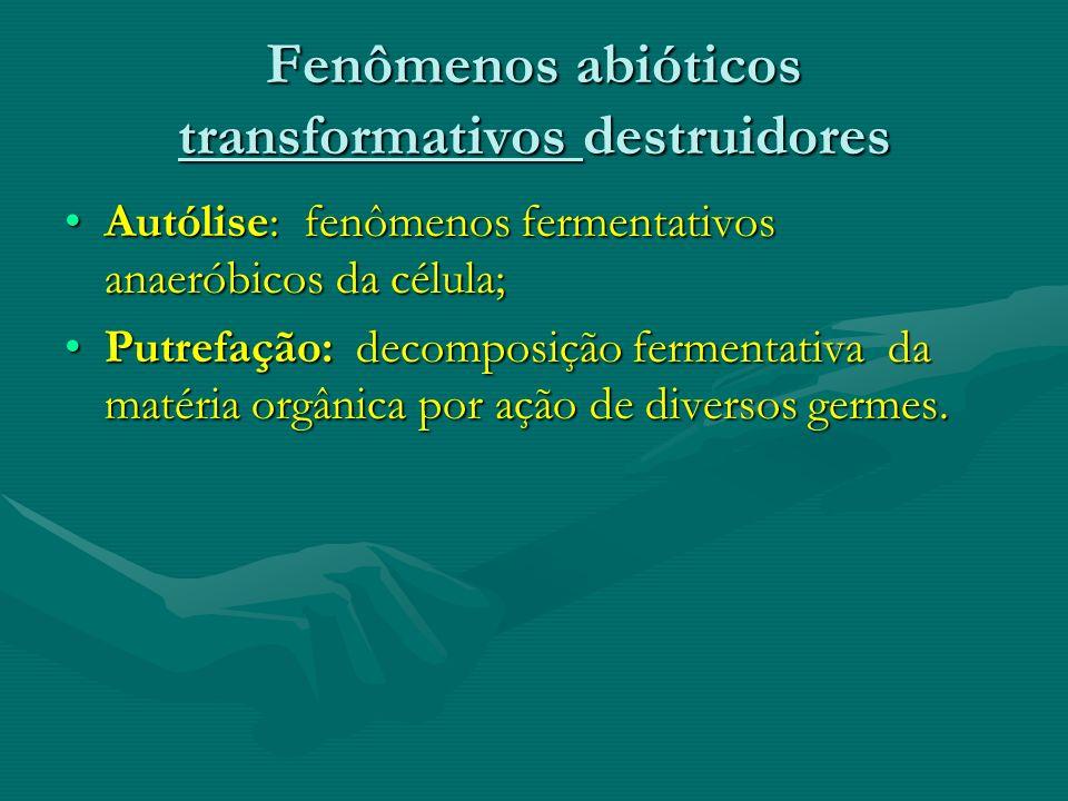 Fenômenos abióticos transformativos destruidores