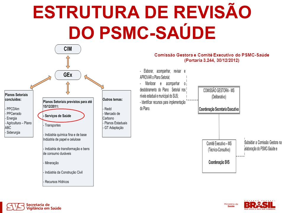 ESTRUTURA DE REVISÃO DO PSMC-SAÚDE