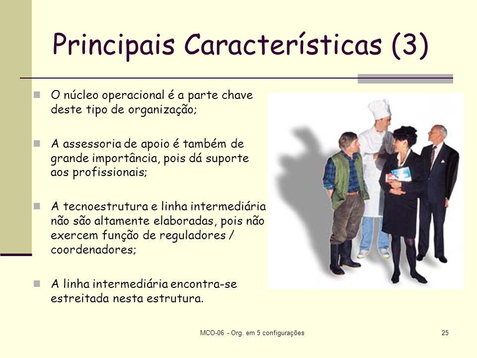 Principais Características (3)