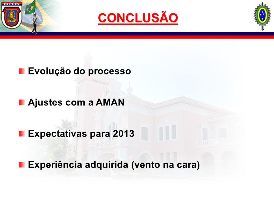 CONCLUSÃO Evolução do processo Ajustes com a AMAN