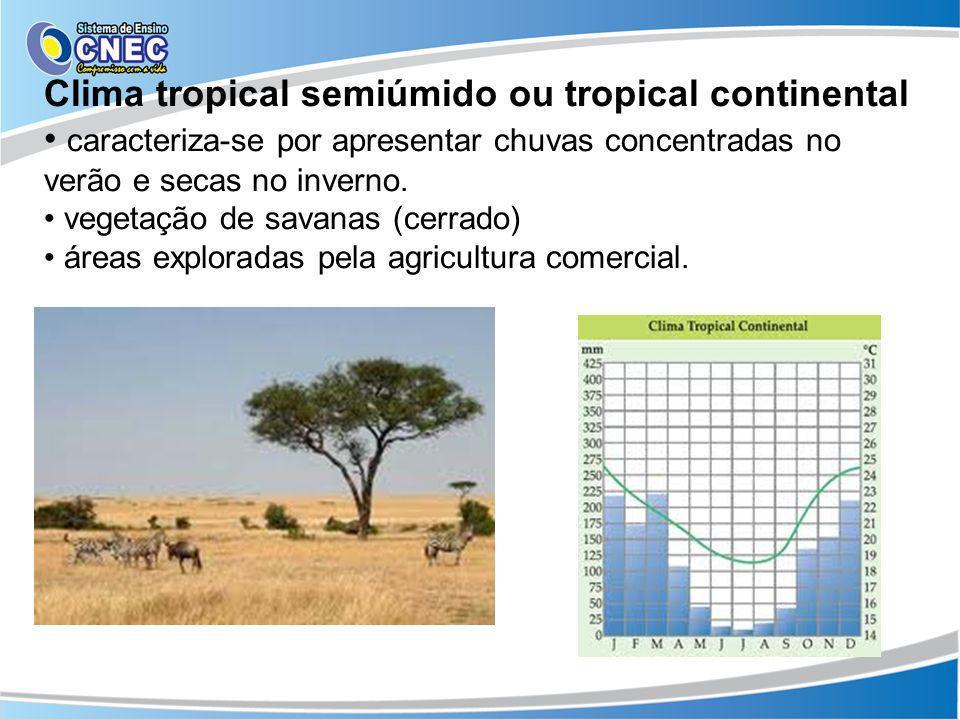 Clima tropical semiúmido ou tropical continental