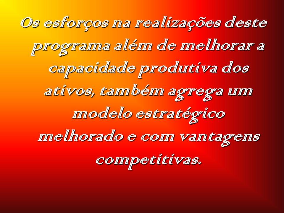 Os esforços na realizações deste programa além de melhorar a capacidade produtiva dos ativos, também agrega um modelo estratégico melhorado e com vantagens competitivas.