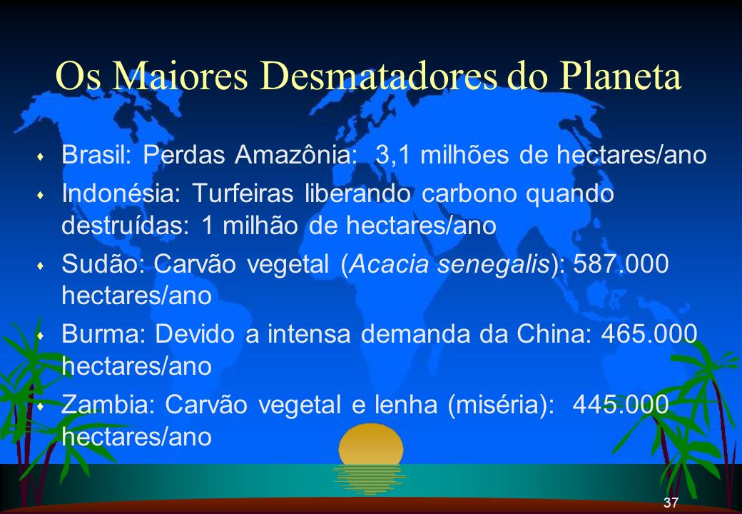 Os Maiores Desmatadores do Planeta