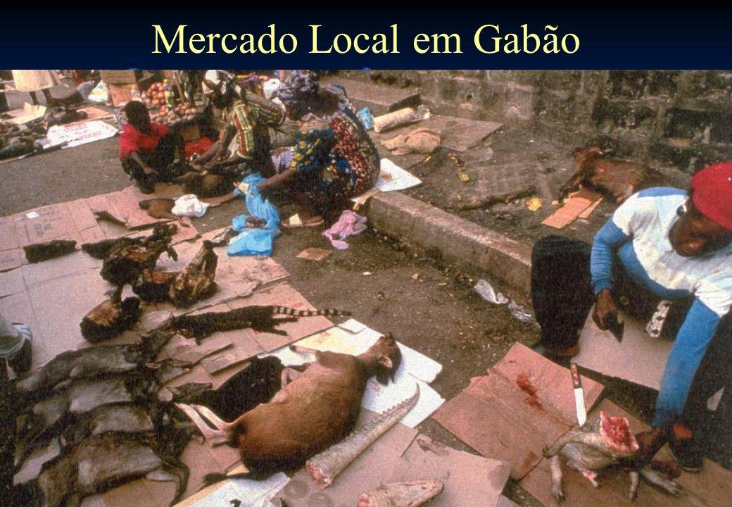 Mercado Local em Gabão