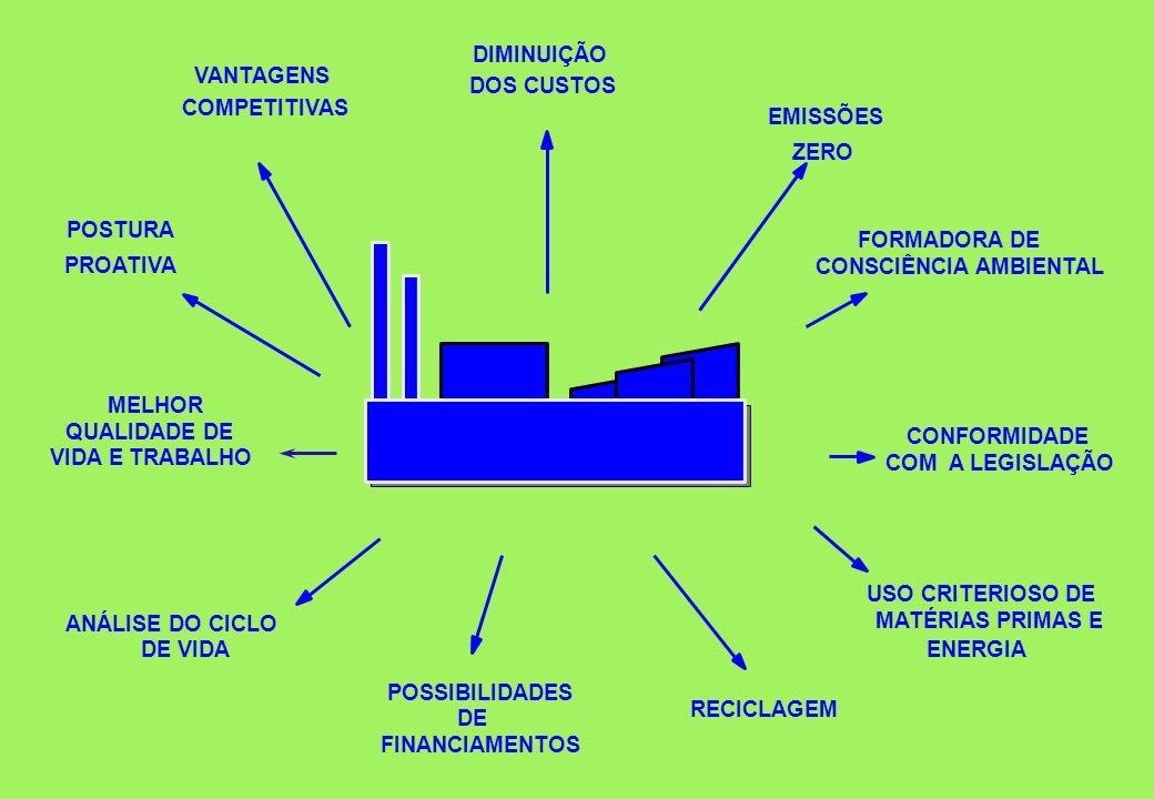 DIMINUIÇÃO VANTAGENS. DOS CUSTOS. COMPETITIVAS. EMISSÕES. ZERO. POSTURA. FORMADORA DE. PROATIVA.
