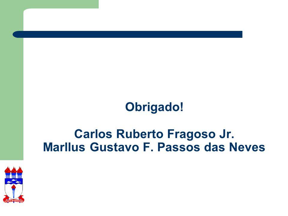 Obrigado. Carlos Ruberto Fragoso Jr. Marllus Gustavo F