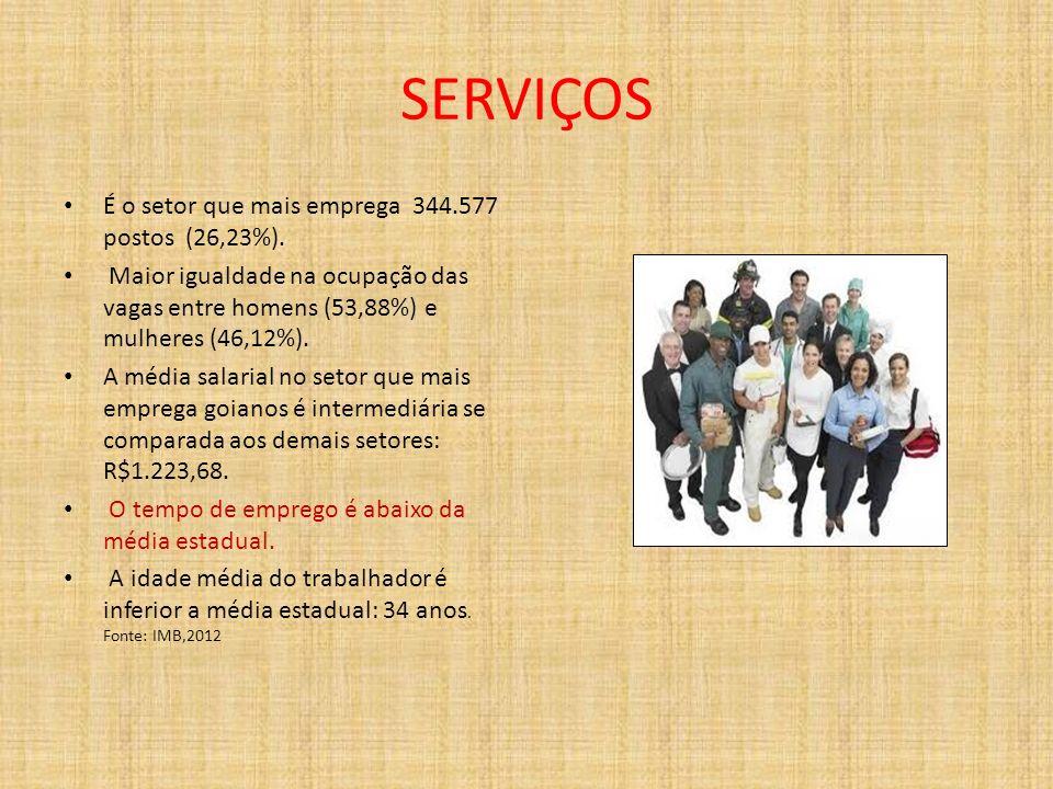 SERVIÇOS É o setor que mais emprega 344.577 postos (26,23%).