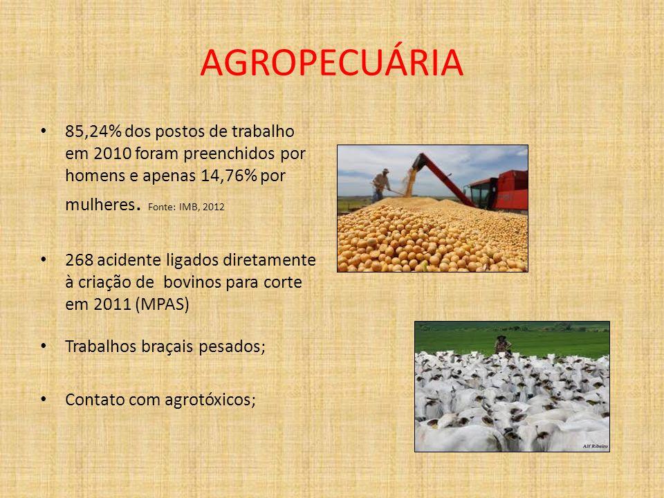 AGROPECUÁRIA85,24% dos postos de trabalho em 2010 foram preenchidos por homens e apenas 14,76% por mulheres. Fonte: IMB, 2012.