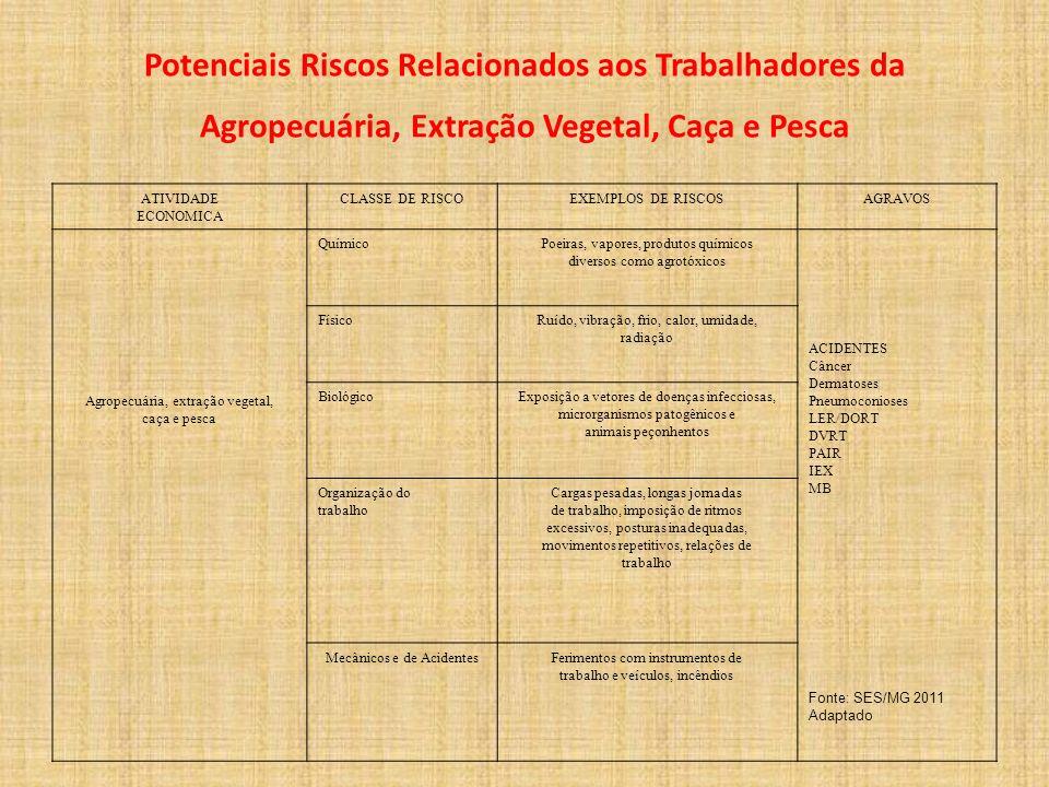 Potenciais Riscos Relacionados aos Trabalhadores da Agropecuária, Extração Vegetal, Caça e Pesca