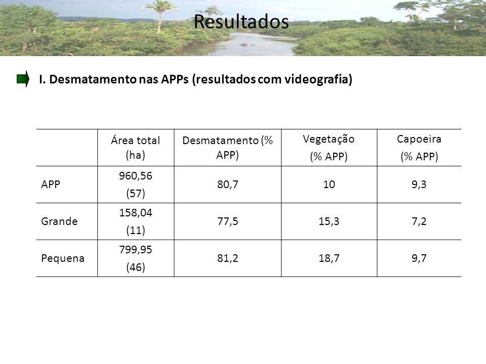 Resultados I. Desmatamento nas APPs (resultados com videografia)