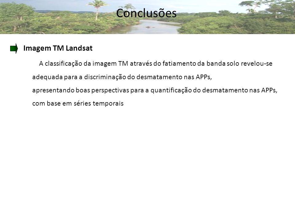 Conclusões Imagem TM Landsat