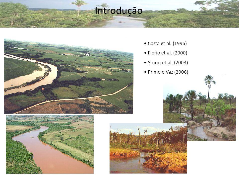 Introdução Costa et al. (1996) Fiorio et al. (2000)