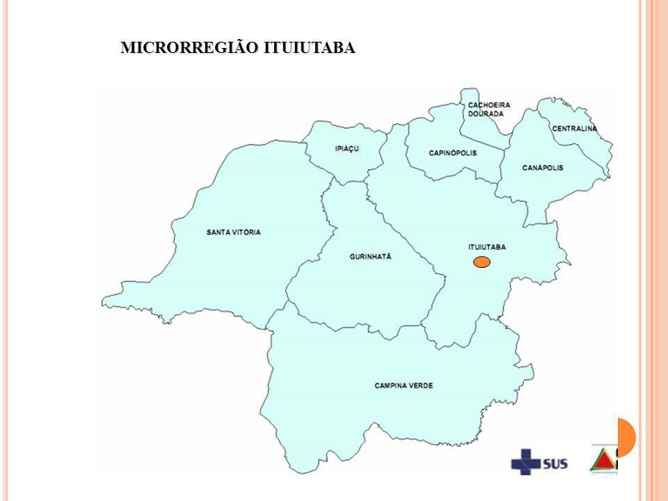 MICRORREGIÃO ITUIUTABA