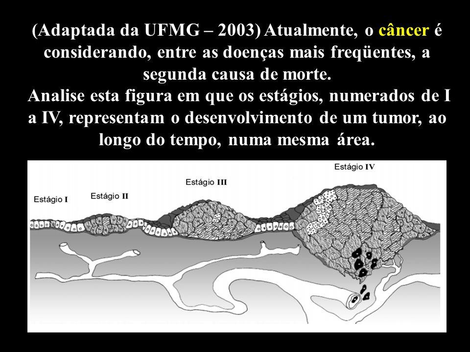 (Adaptada da UFMG – 2003) Atualmente, o câncer é considerando, entre as doenças mais freqüentes, a segunda causa de morte.