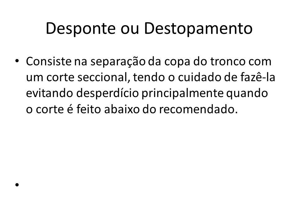 Desponte ou Destopamento