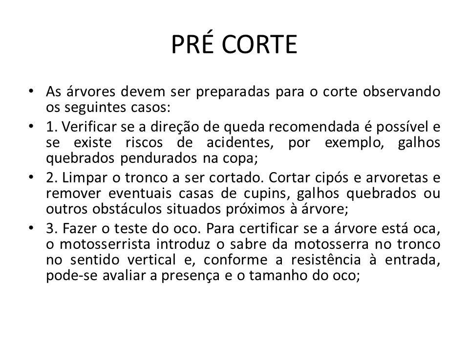 PRÉ CORTE As árvores devem ser preparadas para o corte observando os seguintes casos: