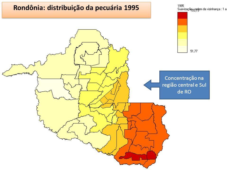Rondônia: distribuição da pecuária 1995