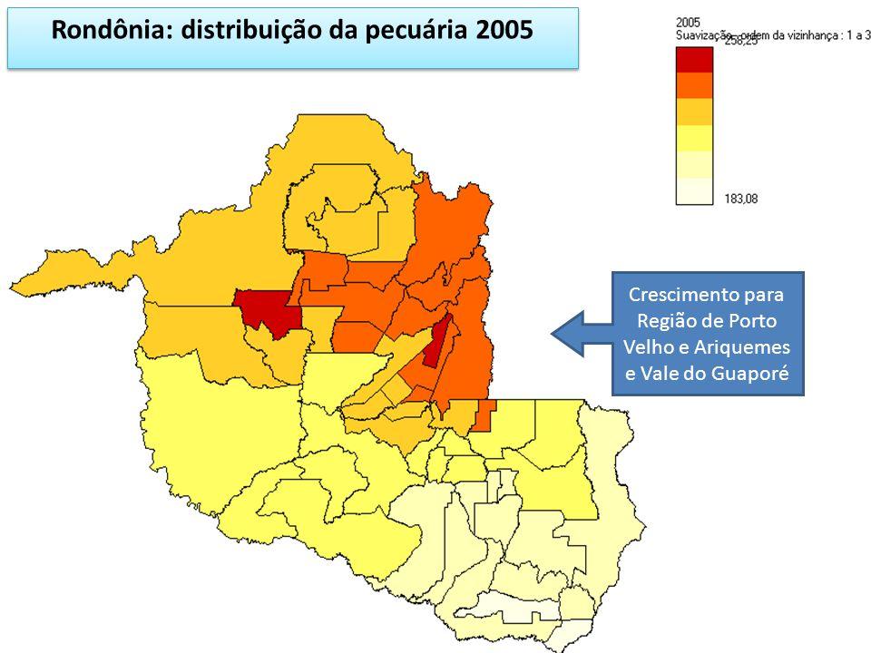 Rondônia: distribuição da pecuária 2005