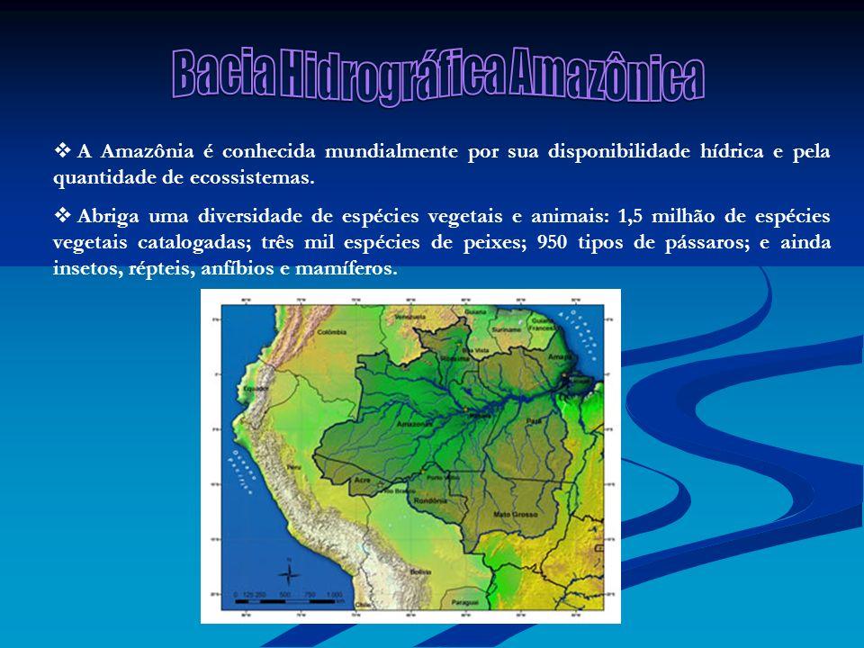 Bacia Hidrográfica Amazônica