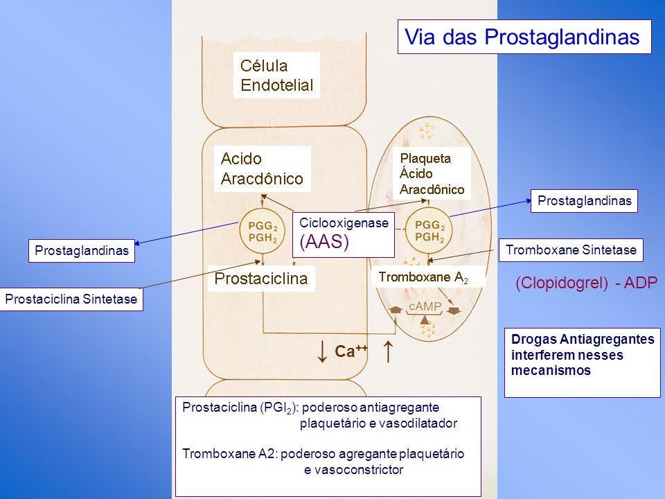 ↓ Ca++ ↑ Via das Prostaglandinas (AAS) (Clopidogrel) - ADP