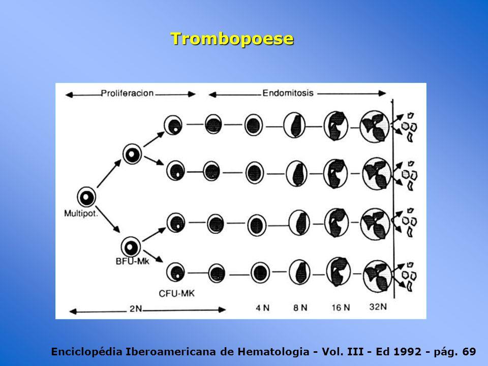 Trombopoese Enciclopédia Iberoamericana de Hematologia - Vol. III - Ed 1992 - pág. 69