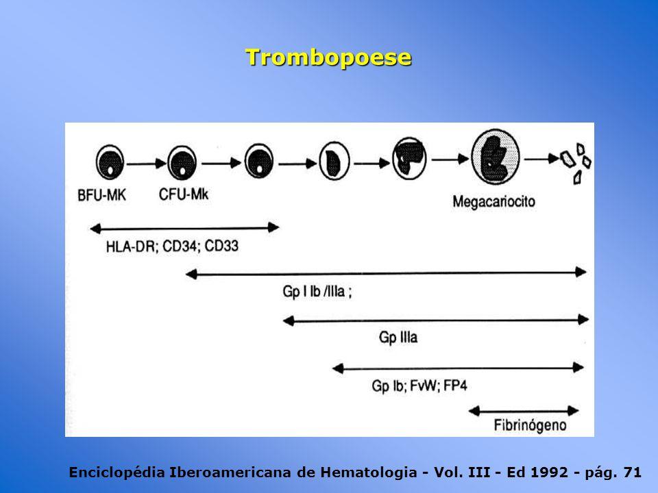 Trombopoese Enciclopédia Iberoamericana de Hematologia - Vol. III - Ed 1992 - pág. 71
