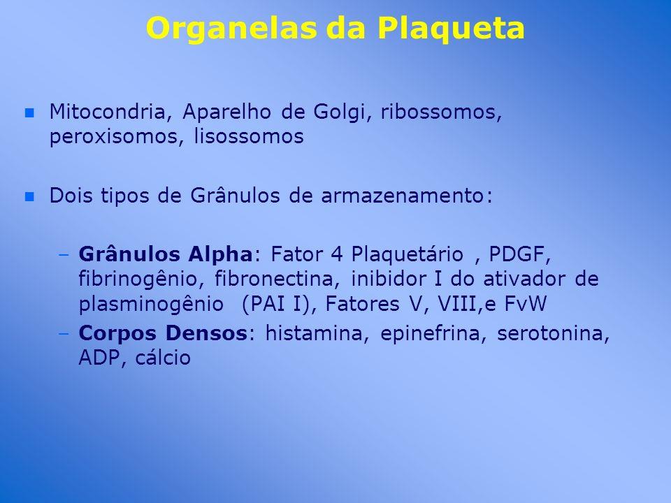 Organelas da PlaquetaMitocondria, Aparelho de Golgi, ribossomos, peroxisomos, lisossomos. Dois tipos de Grânulos de armazenamento: