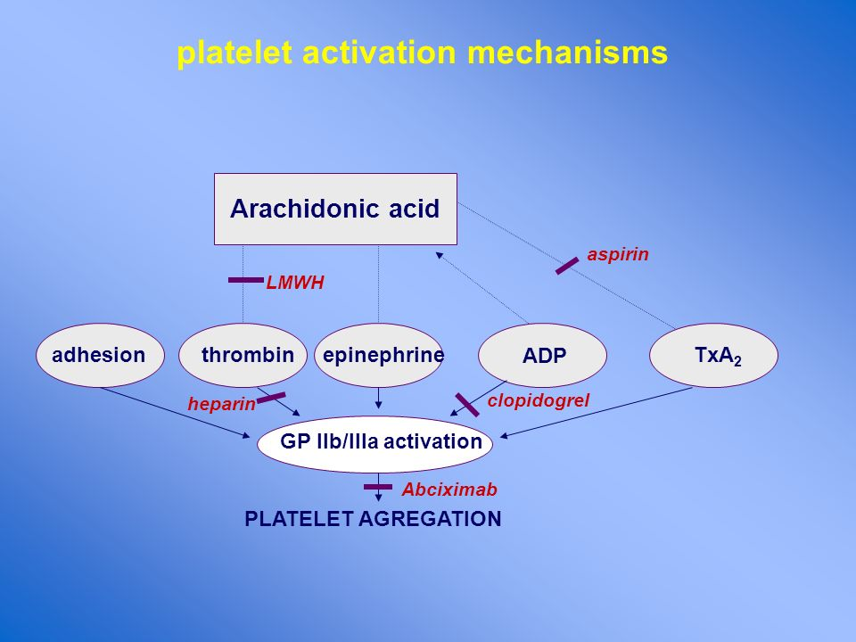 platelet activation mechanisms