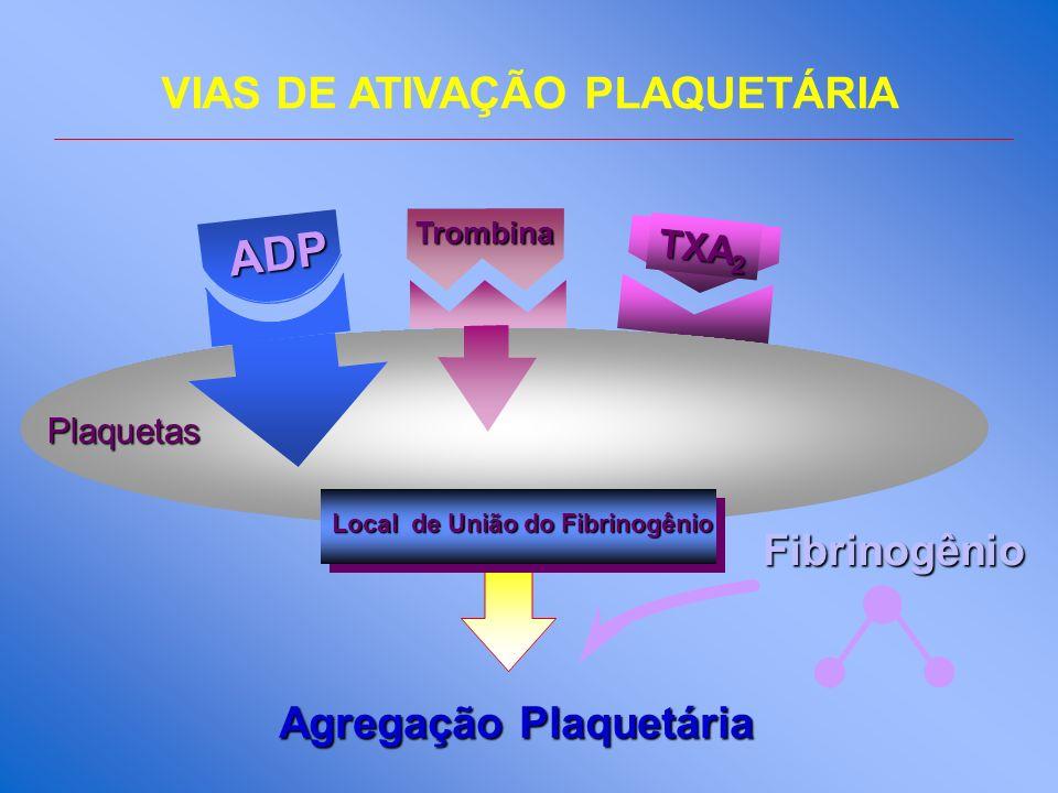 VIAS DE ATIVAÇÃO PLAQUETÁRIA Local de União do Fibrinogênio