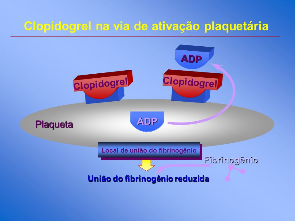 Clopidogrel na via de ativação plaquetária