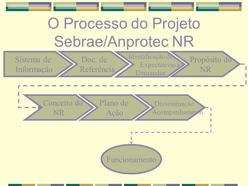 O Processo do Projeto Sebrae/Anprotec NR