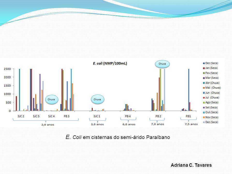 E. Coli em cisternas do semi-árido Paraíbano