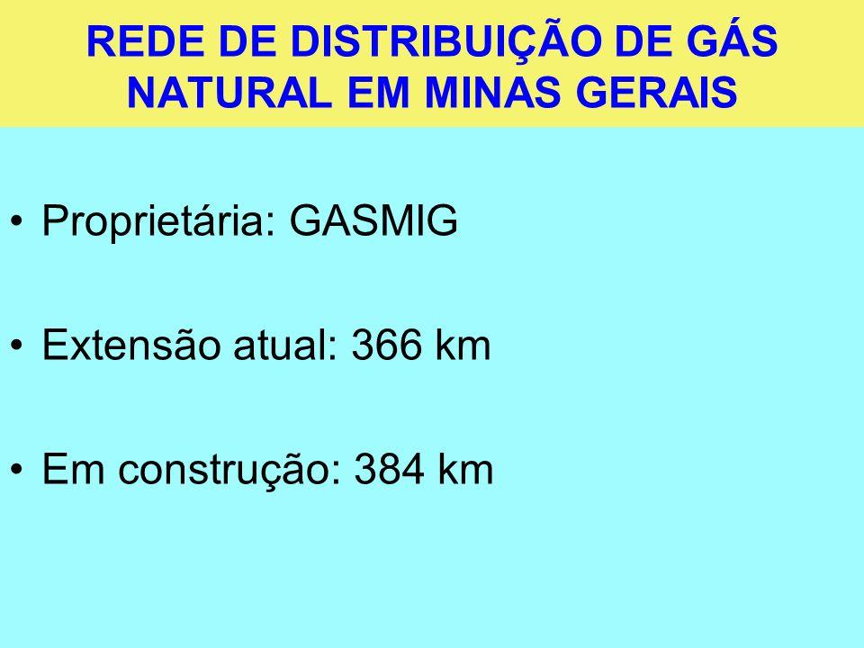 REDE DE DISTRIBUIÇÃO DE GÁS NATURAL EM MINAS GERAIS