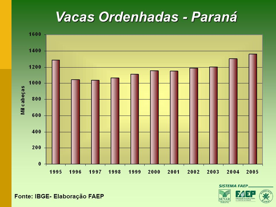 Vacas Ordenhadas - Paraná