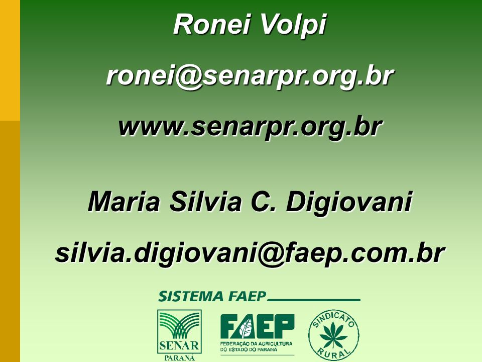 Maria Silvia C. Digiovani